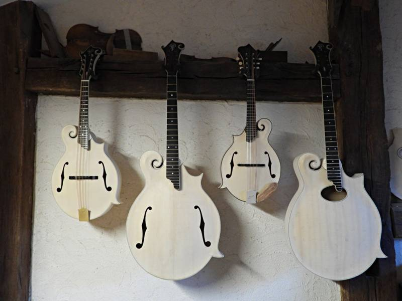 Mandoline, mandola, mandoline gaucher, mandoline d'octave.